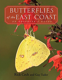 Butterflies of the East Coast by Rick Cech and Guy Tudor